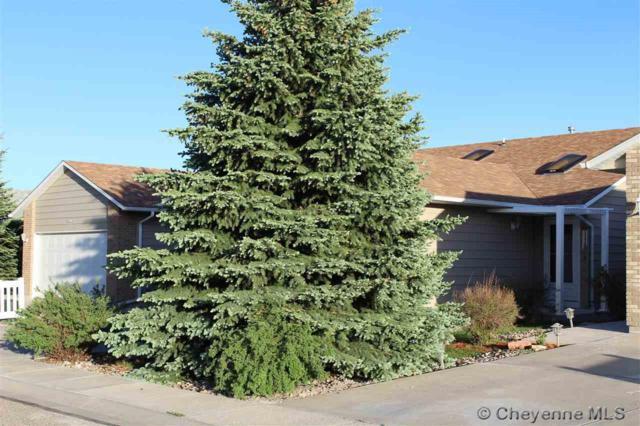 3901 Village View Ln, Cheyenne, WY 82009 (MLS #71824) :: RE/MAX Capitol Properties