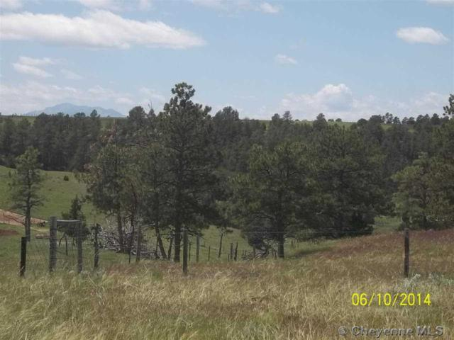 Lot 6 Platte River Ranch, Glendo, WY 82201 (MLS #56650) :: RE/MAX Capitol Properties