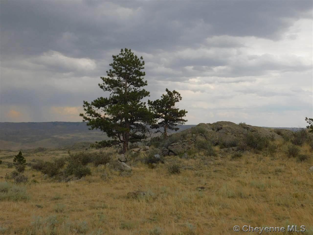 0 Buffalo Trail Ranch - Photo 1
