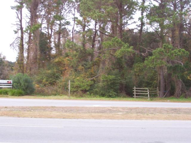 4174 N Highway 17,, Awendaw, SC 29429 (#30328969) :: The Cassina Group