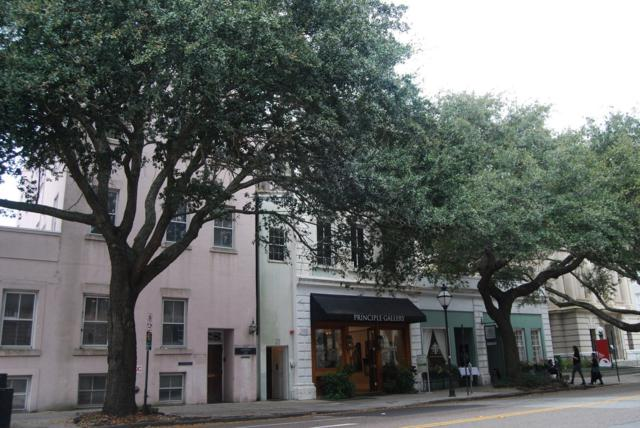 125 Meeting St, Charleston, SC 29401 (#30387076) :: The Cassina Group