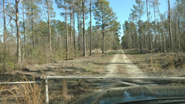 Rural Berkeley County Real Estate & Homes for Sale in