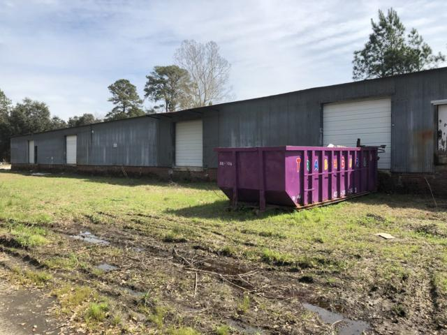 384 Beacon Drive, Walterboro, SC 29488 (#30413216) :: The Cassina Group