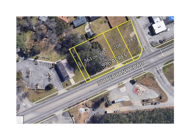 311 Red Bank Rd, Goose Creek, SC 29445 (#30449673) :: The Cassina Group