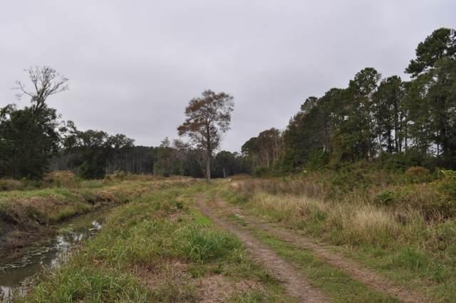 0 Auldreeke Road, Johns Island, SC 29455 (#30528002) :: The Cassina Group