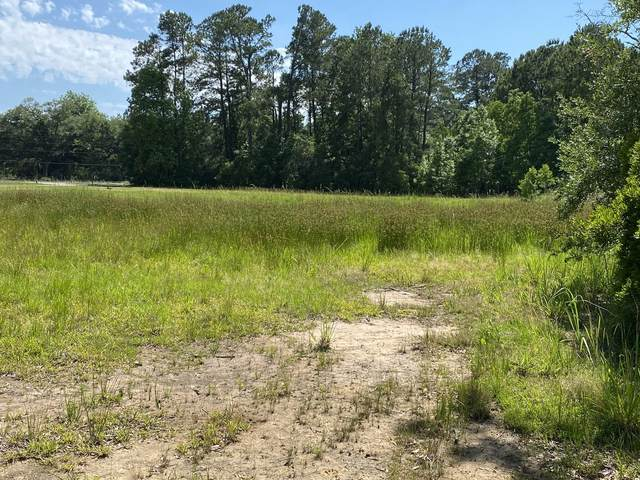 5195 County Line Rd, Ravenel, SC 29470 (#30624288) :: The Cassina Group