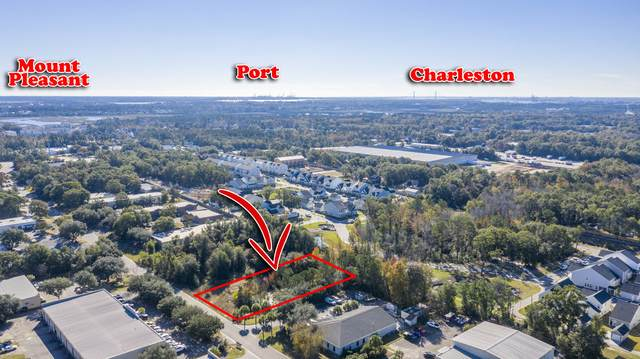481 Jessen Ln, Charleston, SC 29492 (#30671835) :: The Cassina Group