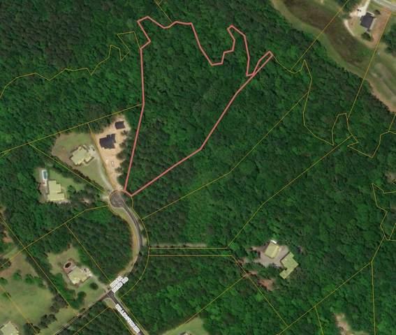 Briar Bend Rd, Ridgeville, SC 29472 (#30738962) :: The Cassina Group