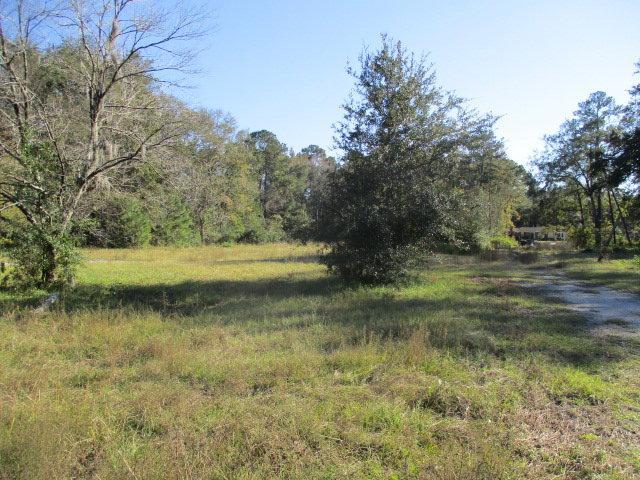 5723 Savannah Hwy, Ravenel, SC 29470 (#30439882) :: The Cassina Group