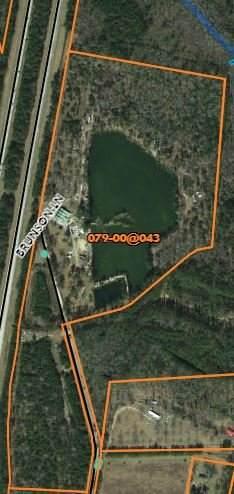 593 Brunson Ln, Walterboro, SC 29488 (#30595468) :: The Cassina Group
