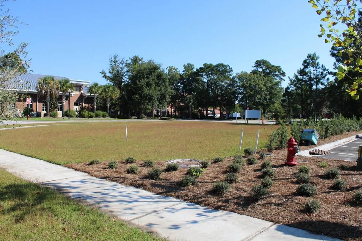 Carolina Park Blvd - Photo 1
