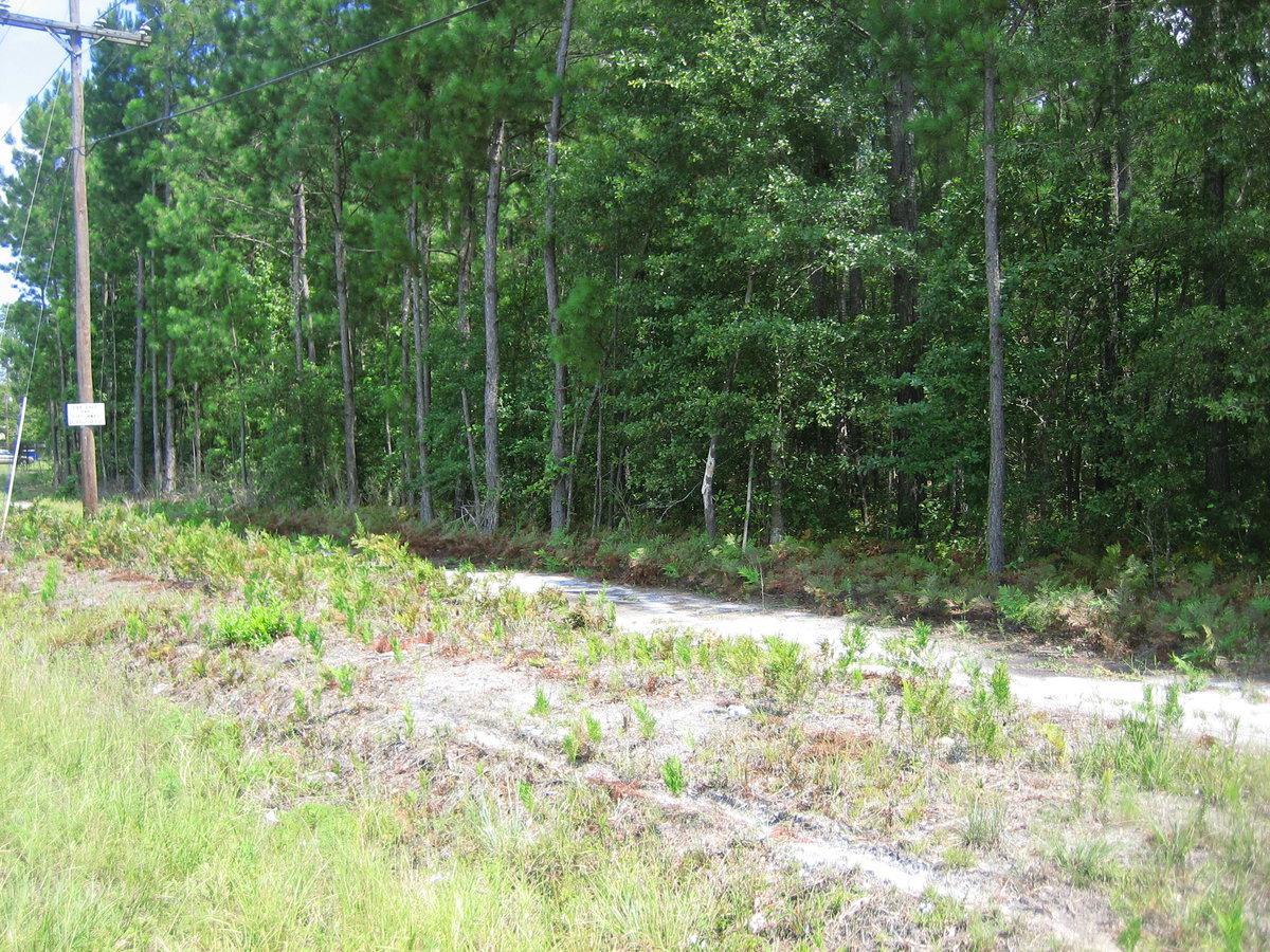 0 Cottageville Highway - Photo 1