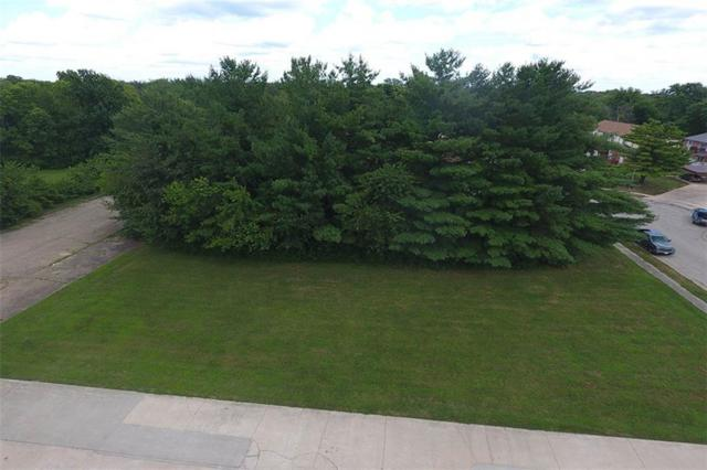 Lot 9 Wildwood Drive, Decatur, IL 62521 (MLS #6194281) :: Main Place Real Estate