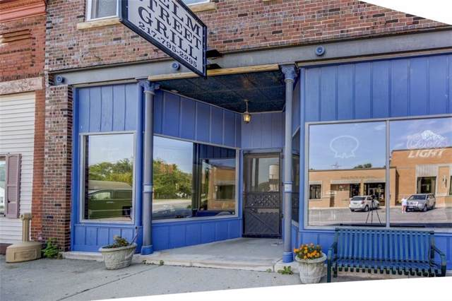 113 E Elm Street, Argenta, IL 62501 (MLS #6197581) :: Main Place Real Estate