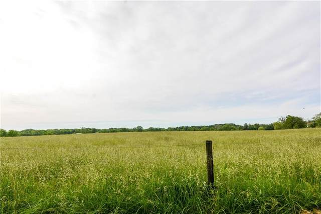 9419 Caleb Road, Argenta, IL 62501 (MLS #6202099) :: Main Place Real Estate