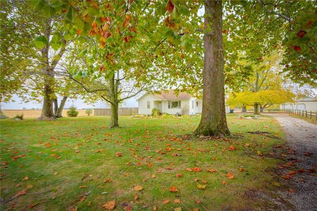 446 N Washington Street, Cerro Gordo, IL 61818 (MLS #6206598) :: Main Place Real Estate