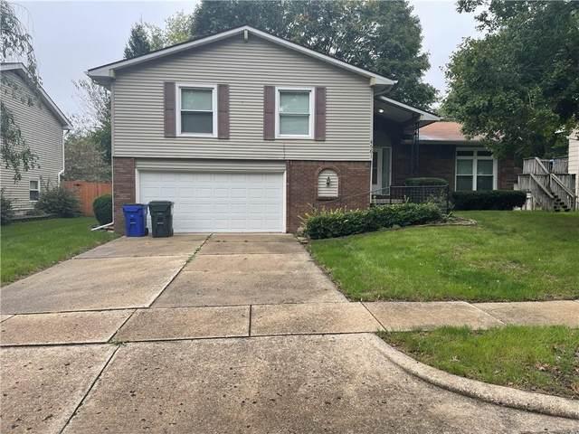 4561 Hale Drive, Decatur, IL 62526 (MLS #6216207) :: Main Place Real Estate