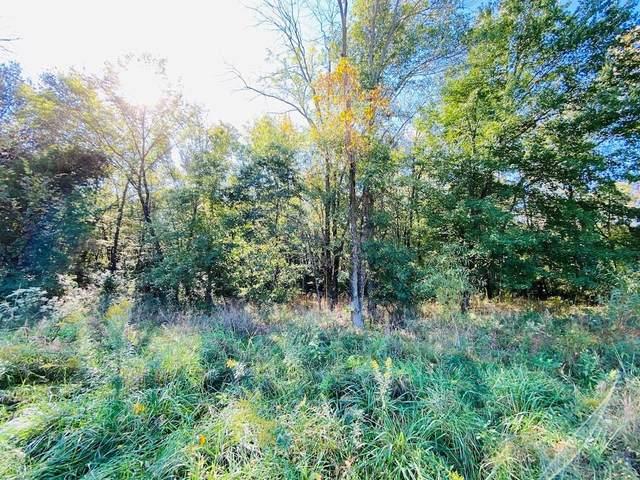 Lot 66 Blackberry Lane, Olney, IL 62450 (MLS #6216283) :: Ryan Dallas Real Estate
