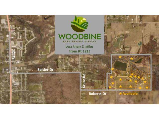 Lot 1 Woodbine Park Prairie, Mt. Zion, IL 62549 (MLS #6184406) :: Main Place Real Estate