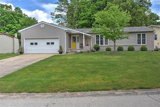 740 Antler Drive, Mt. Zion, IL 62549 (MLS #6201807) :: Main Place Real Estate