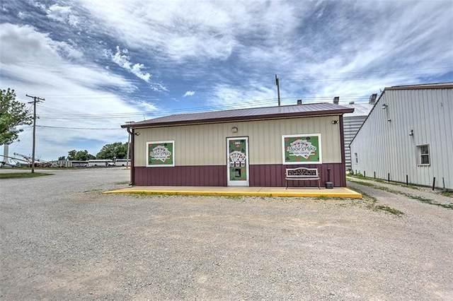 301-307 N Railroad Avenue, Blue Mound, IL 62513 (MLS #6202463) :: Main Place Real Estate