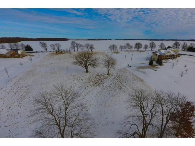 11802 Cemetery, Argenta, IL 62501 (MLS #6190244) :: Main Place Real Estate