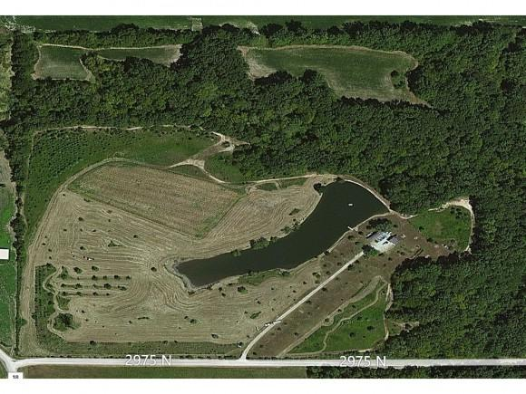 RR1 Box 25A, Bingham, IL 62011 (MLS #6183935) :: Main Place Real Estate
