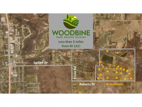 Lot 2 Woodbine Park Prairie Estates, Mt. Zion, IL 62549 (MLS #6184405) :: Main Place Real Estate
