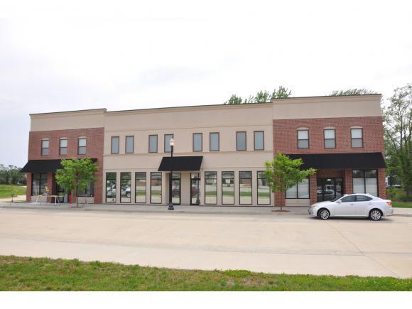 1391 Mt Zion Parkway, Mt. Zion, IL 63543 (MLS #6184754) :: Main Place Real Estate
