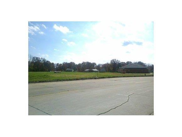 2306 Hoffman Drive - Photo 1