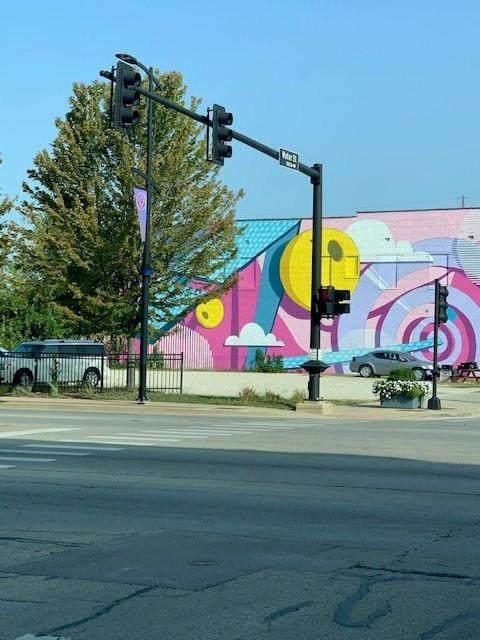 160 E Eldorado Street, Decatur, IL 62523 (MLS #6206056) :: Main Place Real Estate