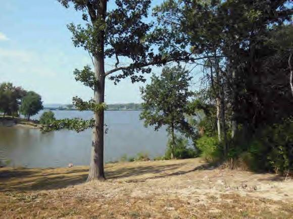 Lot 6 Harbour Court, Decatur, IL 62521 (MLS #6170647) :: Main Place Real Estate