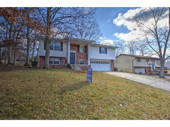 790 Antler Dr, Mt. Zion, IL 62549 (MLS #6190021) :: Main Place Real Estate