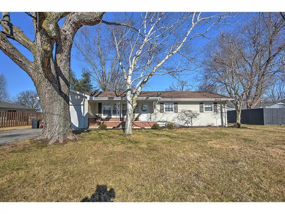 230 E Roberts Dr, Mt. Zion, IL 62549 (MLS #6190082) :: Main Place Real Estate
