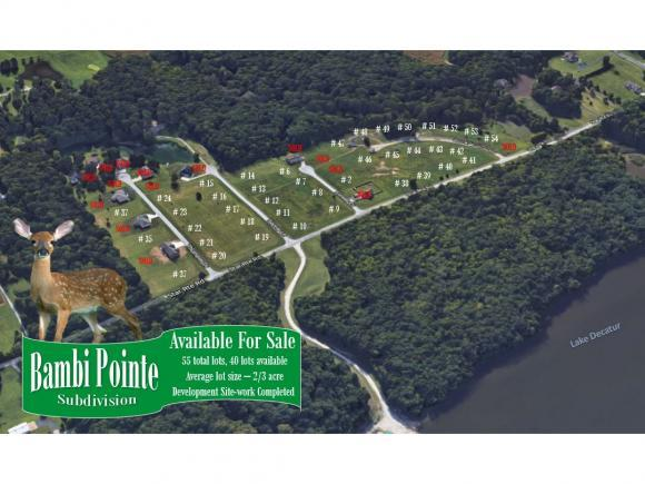 1 Bambi Pointe, Oakley, IL 62501 (MLS #6190338) :: Main Place Real Estate