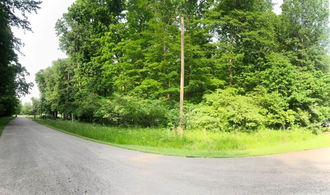 344 Lorelei Drive - Photo 1