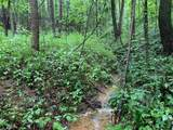 0 Coon Hollow Road - Photo 3