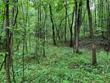 0 Coon Hollow Road - Photo 6