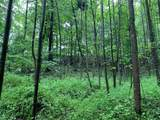 0 Coon Hollow Road - Photo 7