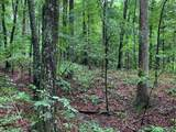 0 Coon Hollow Road - Photo 8