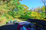 8762 Woodview Drive - Photo 18