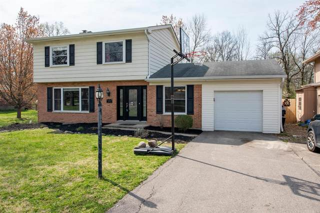 7003 Paddison Road, Anderson Twp, OH 45230 (MLS #1695288) :: Bella Realty Group