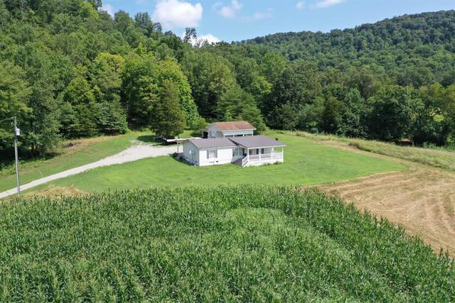 238 Anderson Hill Road, Jefferson Twp, OH 45616 (MLS #1696193) :: Bella Realty Group