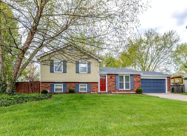 4555 Wood Forest Lane, Union Twp, OH 45103 (MLS #1697402) :: Apex Group