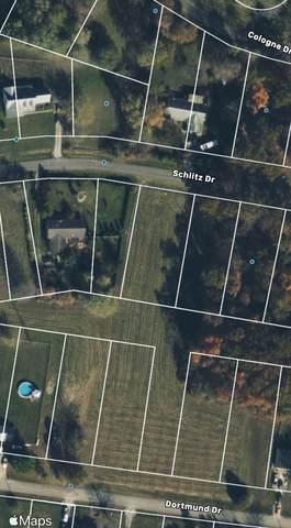 216 Schlitz Drive, Perry Twp, OH 45118 (MLS #1698992) :: Apex Group