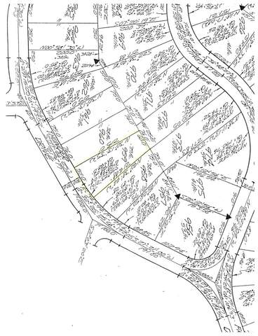 131 Thunder Drive, Eaton, OH 45320 (#1699335) :: Century 21 Thacker & Associates, Inc.