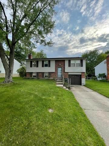 12071 Hazelhurst Drive, Springfield Twp., OH 45240 (MLS #1699457) :: Bella Realty Group