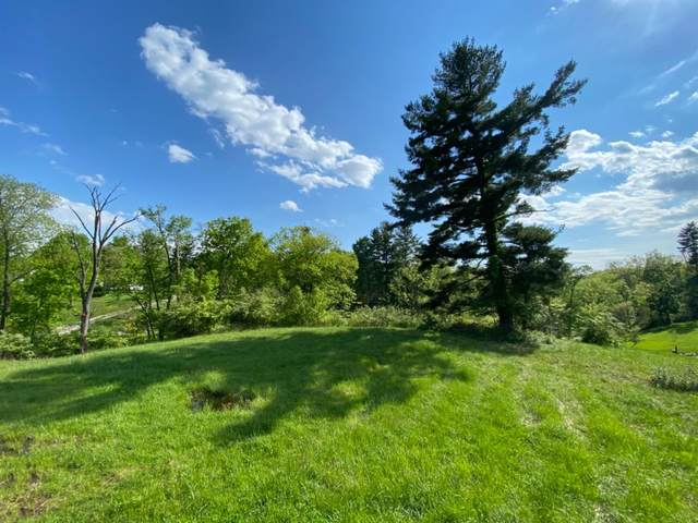 5880 Crabtree Lane, Indian Hill, OH 45243 (#1699521) :: The Chabris Group