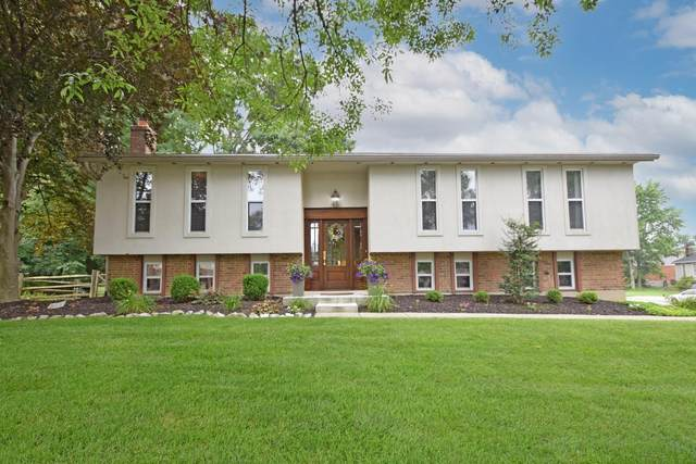 5963 Hickoryknoll Drive, Delhi Twp, OH 45233 (#1708981) :: The Huffaker Group
