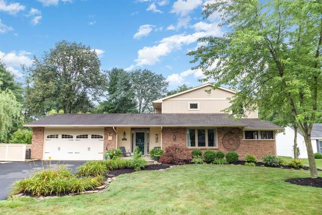9095 Coachtrail Lane, Symmes Twp, OH 45242 (#1709251) :: The Huffaker Group